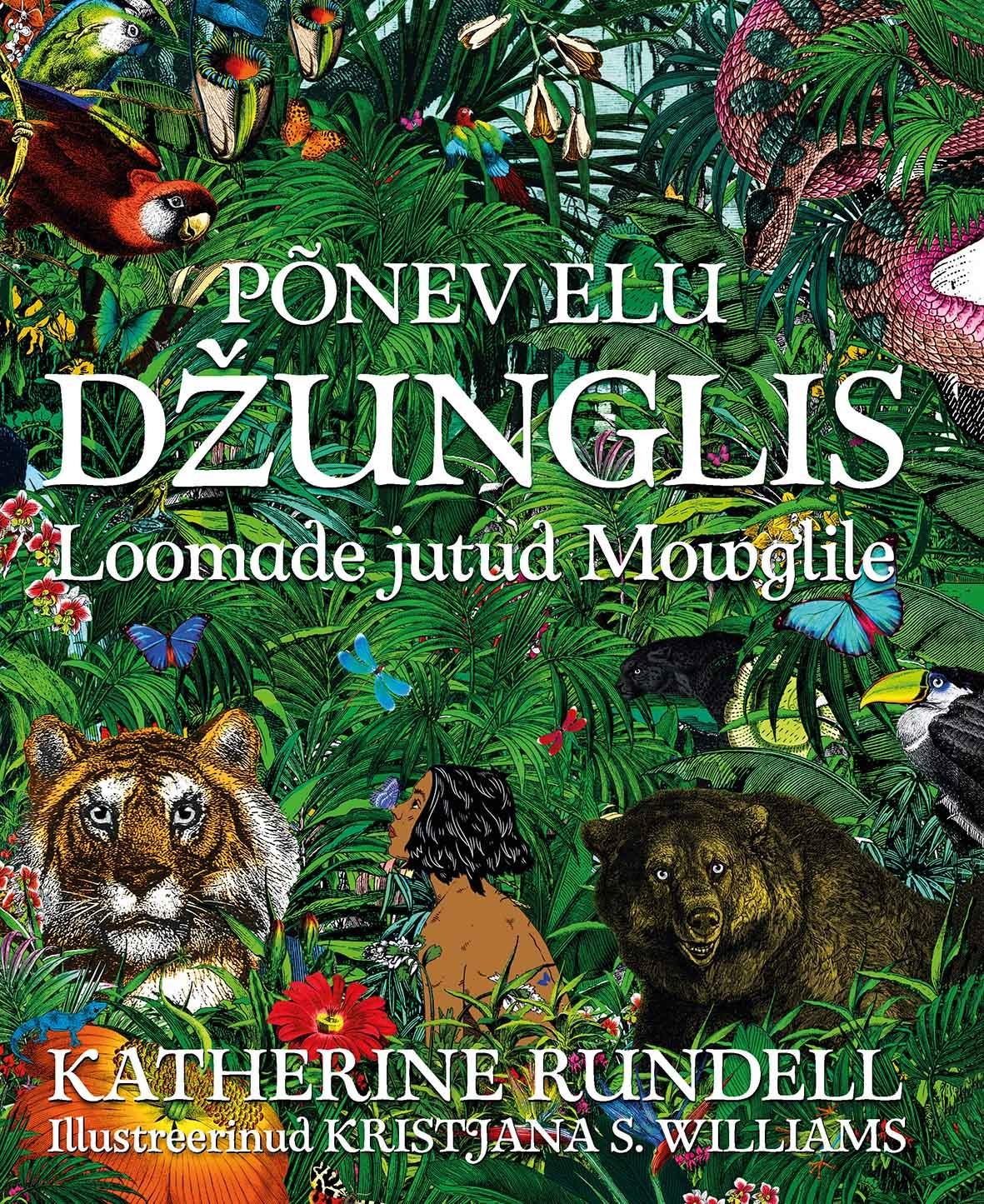 Põnev elu džunglis